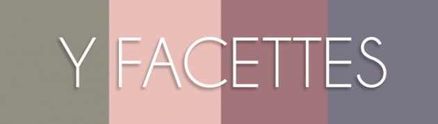 YSL colour swatches Y Facettes