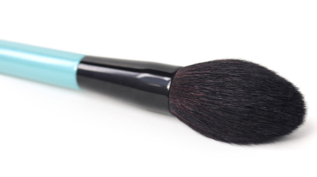 Pointed face brush review