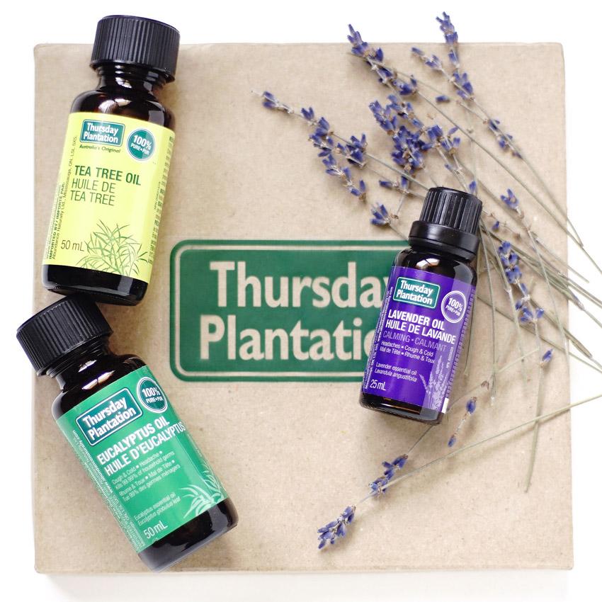 Tea Tree Essential Oil In Emulsion Paint
