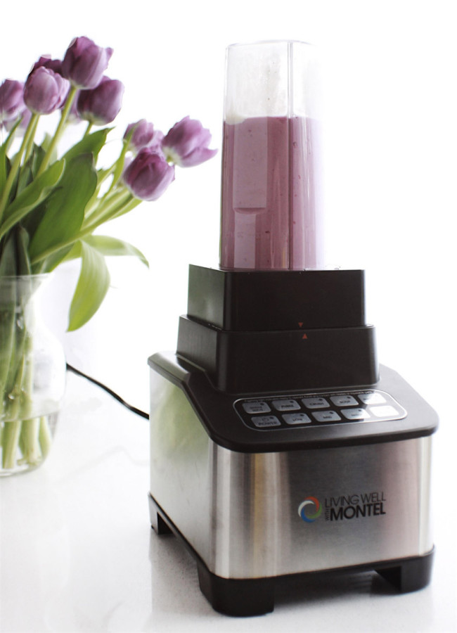 Living Well with Montel 1200W Emulsifier Blender review